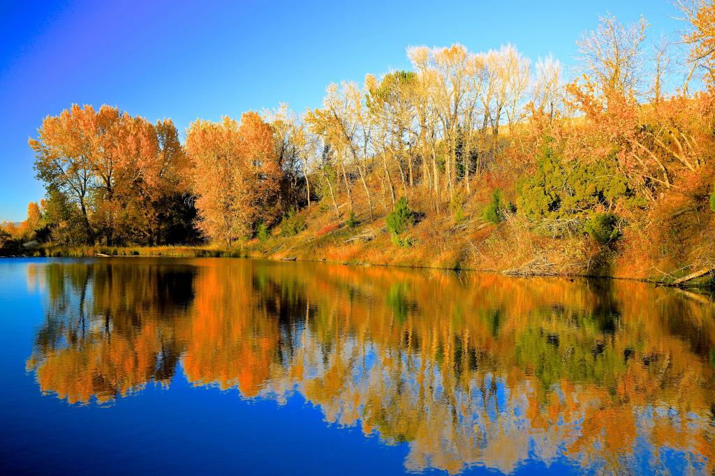 """I NAMED THIS POND """"HUCK'S POND""""--I SHOOT TYPICALLY WITHIN 2 HOURS AFTER SUNRISE AND 2 HOURS BEFORE SUNSET, FOR MAXIMUM COLOR SATURATION"""