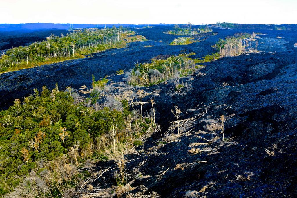 'ISLANDS OF TREES' IN THE MIDST OF THE KILAUEA LAVA FLOWS ON THE BIG ISLAND-THIS REMINDS ME OF THE SMALL AREAS OF LIFE THAT ARE STILL LEFT AS DARKNESS CONSUMES THE LAND!