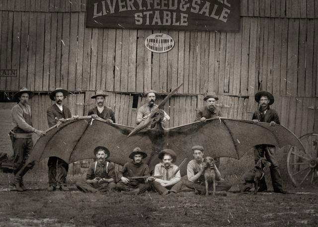 PTERODACTYL PHOTO TAKEN IN THE LATE 1800's ON THE TEXAS - MEXICAN BORDER.  THIS IS IMPORTANT BECAUSE OF THE NUMEROUS REPORTS OF IDENTICAL SIGHTING REPORTED RECENTLY.