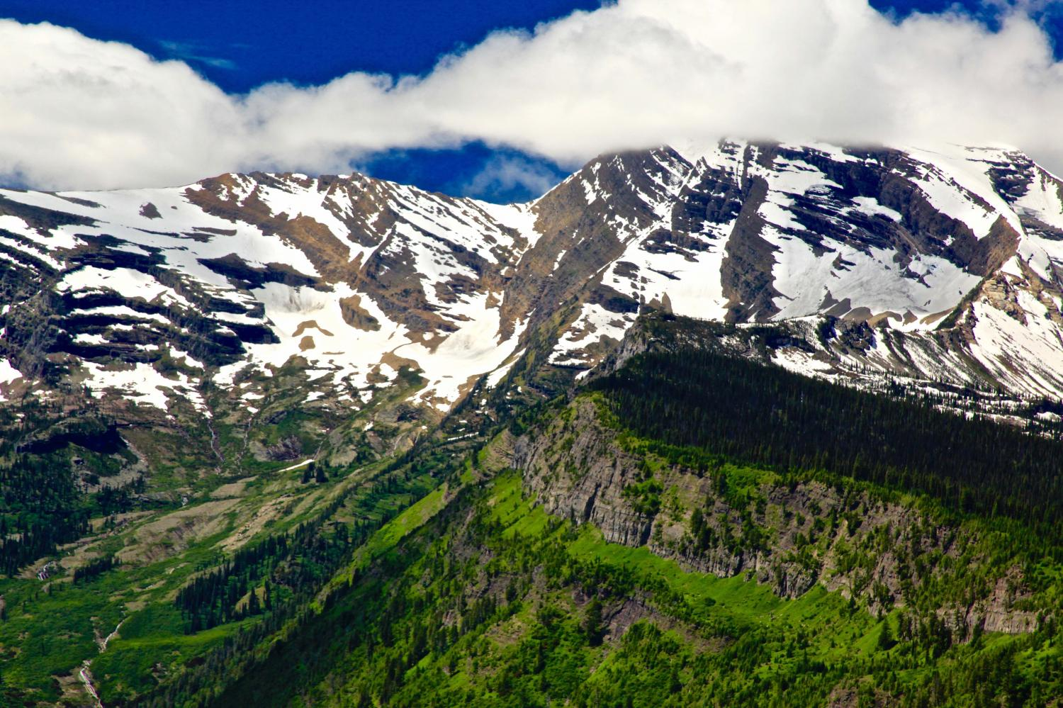 """GLACIER NATIONAL PARK ,THE LAND OF ASTONISHING CONTRAST - LUSH GREEN MEADOWS SET AGAINST THE  GLACIERS IS EXQUISITE -""""THE EARTH SHOWS FORTH GOD'S HANDIWORK""""-GOING TO THE SUN HIGHWAY IS A GREAT PLACE TO HOLD A PRAISE SESSION"""