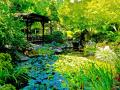 "SEATTLE: ""JAPANESE GARDENS"",SO BALANCED, BEAUTIFUL AND RESTFUL - THE BEAUTY OF GREEN AND FLOWING WATER CAN'T BE BEATEN FOR IT'S CALMING EFFECTS"