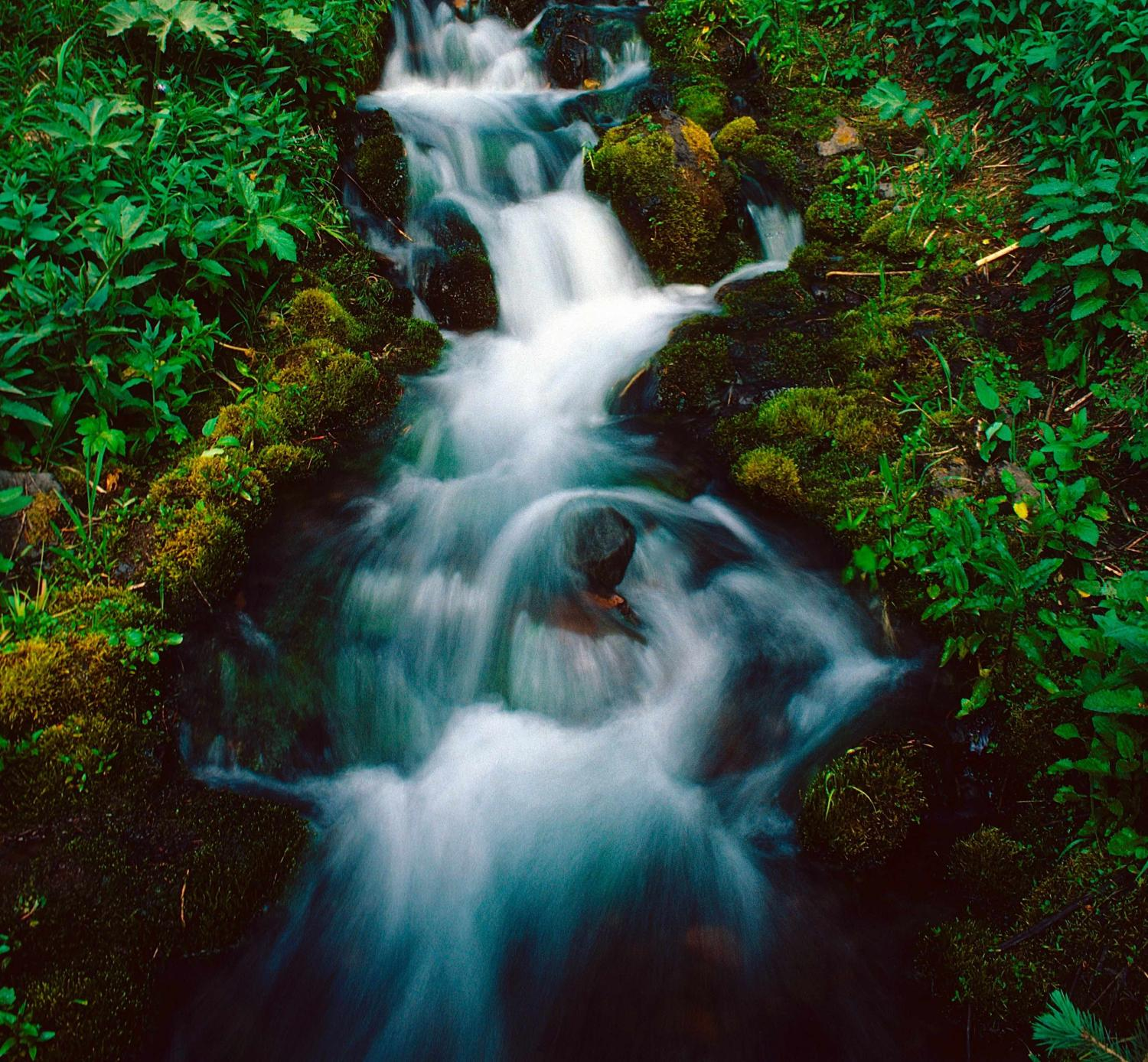 """THIS SMALL WATER FALL, LESS THAN ONE SQUARE YARD IN AREA, LIES BENEATH """"PALLISADE FALLS"""", IN THE HYALITE CREEK AREA OF BOZEMAN"""